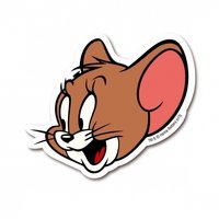Jerry Cartoon Magneet